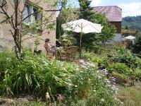 Wildromantischer Garten