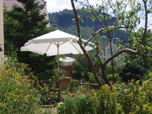 Garten und Sonnenschirm