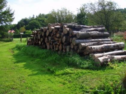 Neues Holz hinter der Scheune